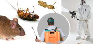 شركة لرش المنازل من الحشرات 0507067378